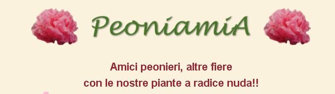 1 Peonia 22.9.